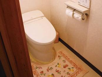 便利な臭気抜き機能付き!手洗い器はワンプッシュタイプに。