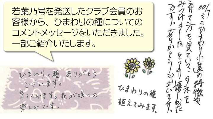 106p01_007himawari.jpg